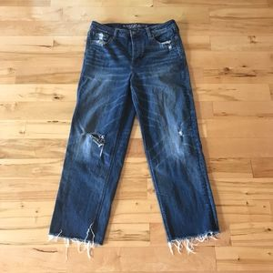 American Eagle Hi Rise Straight Buttonfly Jeans 12